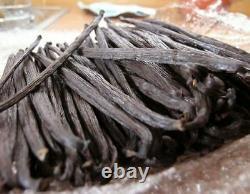 1/2 LB Prime Gourmet Grade A Madagascar Bourbon Vanilla Beans 6 7