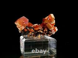 Bold Cherry Red Super Quality Vanadinite Crystal Cluster on Dark Matrix #5