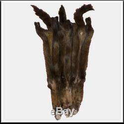 Glacier Wear Sable Pine Marten Fur Pelt Hide Dark Brown Canadian Select