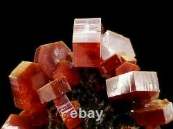 High Quality Red Vanadinite Crystal Floater Cluster with Dark Matrix