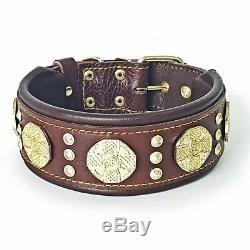 Maximus dark brown Set collar & lead. Handmade quality from BESTIA. M-XXL