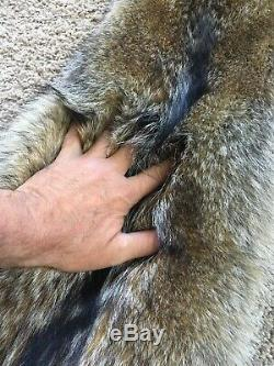 XXXL Dark Coyote Pelt Tanned Top Quality Wild Country Furs Log Cabin Decor