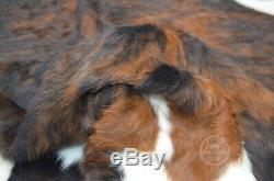 Vache Rug Noir Brindle Tricolor, De Haute Qualité, Cheveux Sur Hide, Grand (l), Pc616